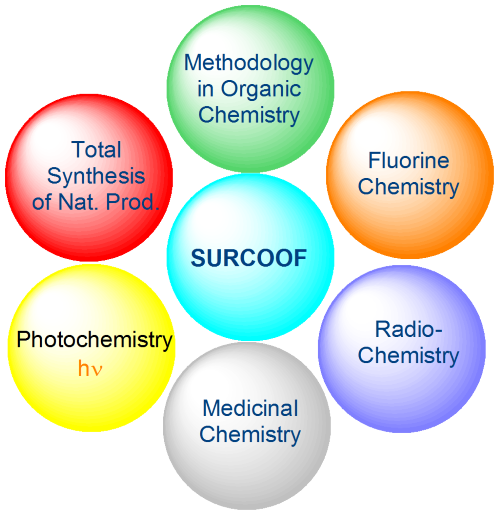 research activities of SURCOOF